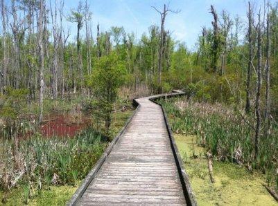 Goose Creek State Park